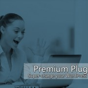 WordPress Mega Plugins